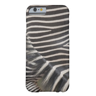 Zebror Barely There iPhone 6 Fodral