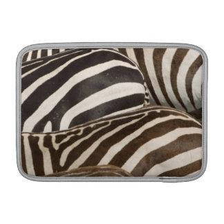 Zebror (Equusquagga) randar, Masai Mara MacBook Sleeve