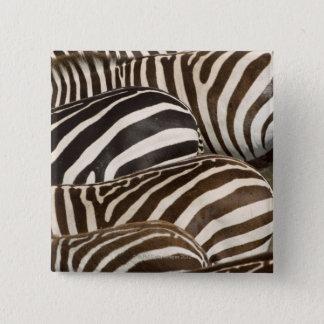 Zebror (Equusquagga) randar, Masai Mara, Standard Kanpp Fyrkantig 5.1 Cm