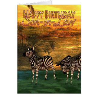 Zebror för Son-i-Lag födelsedagkort i vatten Hälsningskort