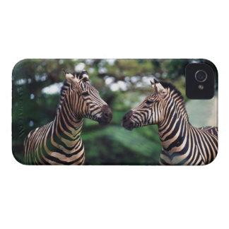 zebror iPhone 4 Case-Mate skydd