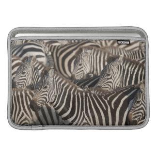 Zebror Kenya, afrika MacBook Sleeve