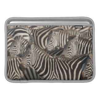 Zebror Kenya, afrika MacBook Sleeves