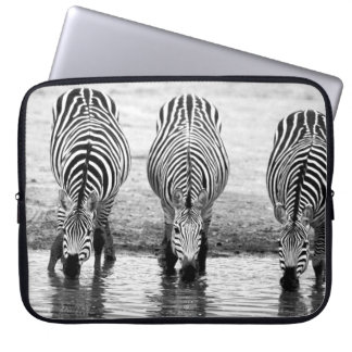 zebror laptopskydd fodral