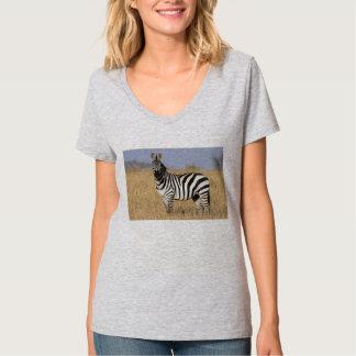 Zebror- och hästdiktutslagsplats tee shirt