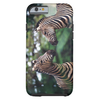 zebror tough iPhone 6 fodral