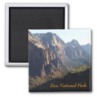 Zion kylmagnet magnet