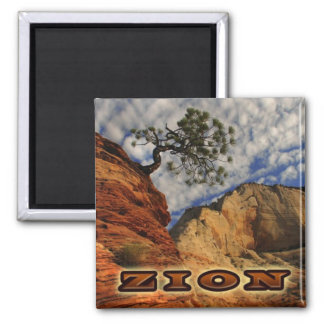 Zion Magnate Magnet
