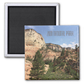 Zion nationalpark USA Magnet