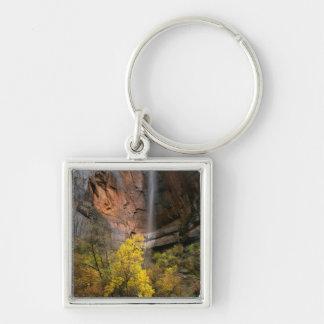 Zion nationalpark, Utah. USA. Ephemeral Fyrkantig Silverfärgad Nyckelring