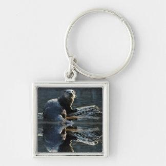 Zipper-handtag Keychain för foto för utter för Fyrkantig Silverfärgad Nyckelring